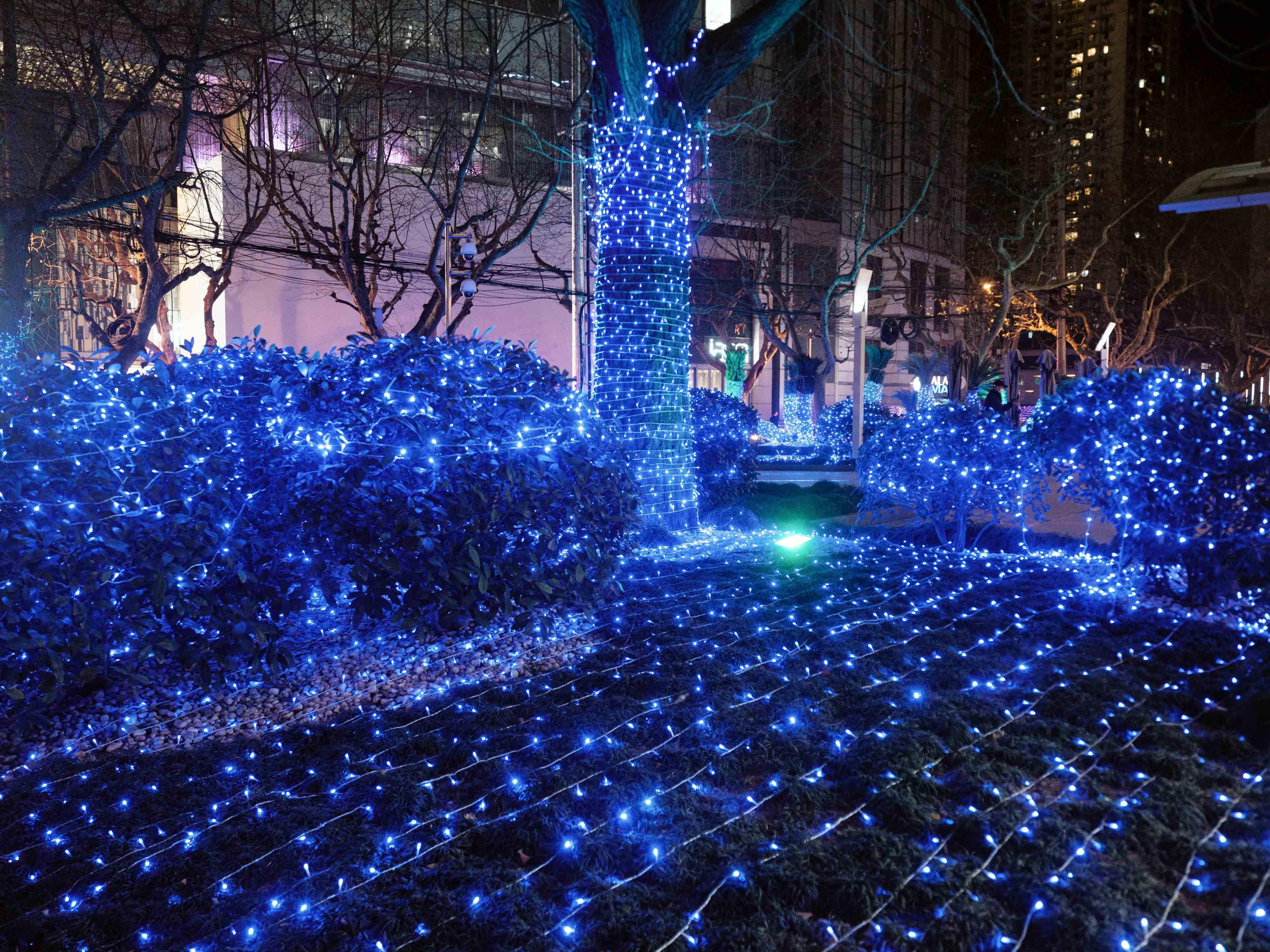 2021年1月,上海商业街。