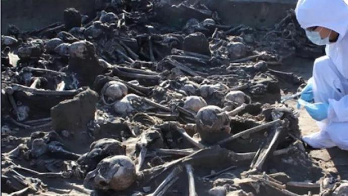 2020年人类骨骼考古:关注古代人类健康,复原社会文化