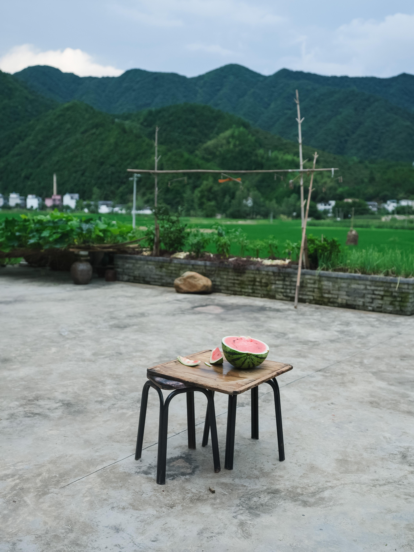 2019年夏,江南的乡村。澎湃新闻 周平浪 图