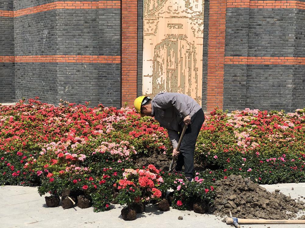2021年3月,施工人员对中共一大纪念馆墙角的绿化进行换花养护。