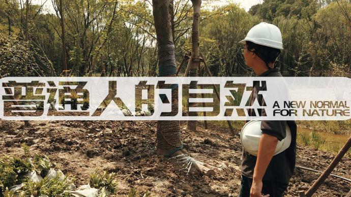 普通人的自然|驻场景观设计师: 与植物、工地和甲方打交道