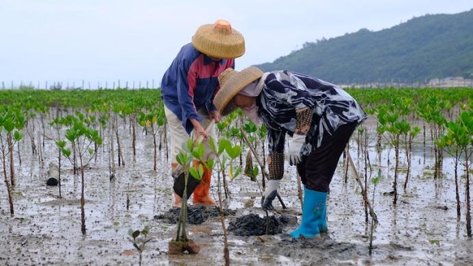 防晒霜会导致珊瑚白化!这些企业如此让环保从口号变为行动