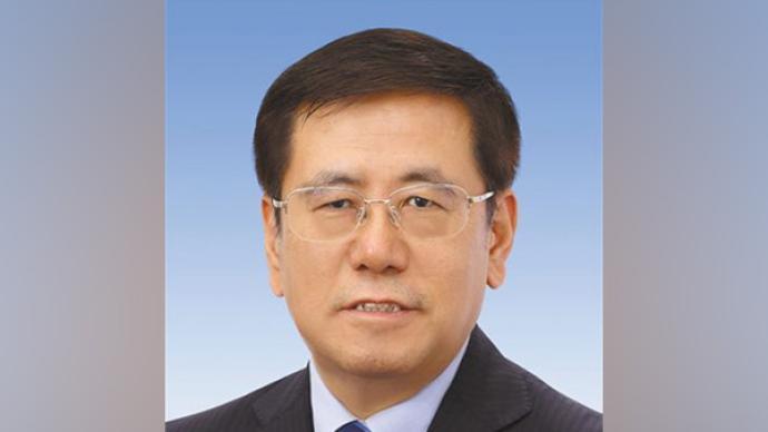 王凯当选河南省人民政府省长