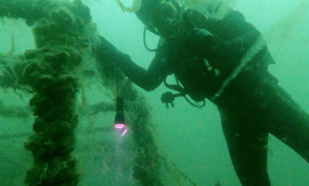 """当地时间2021年6月17日,土耳其科贾埃利省,潜水员在马尔马拉海东端水下清理海鼻涕。在清理过程中发现一艘陈年沉船上覆满黏稠物。土耳其政府正在开展马尔马拉海""""海鼻涕""""清理行动。土耳其环境和城市规划部长库鲁姆上周表示,清理行动在马尔马拉海沿海7个省份展开,这是土耳其最大规模的海洋清理行动。土耳其官员称,希望在五年内将马尔马拉海变成一个干净的海洋。"""