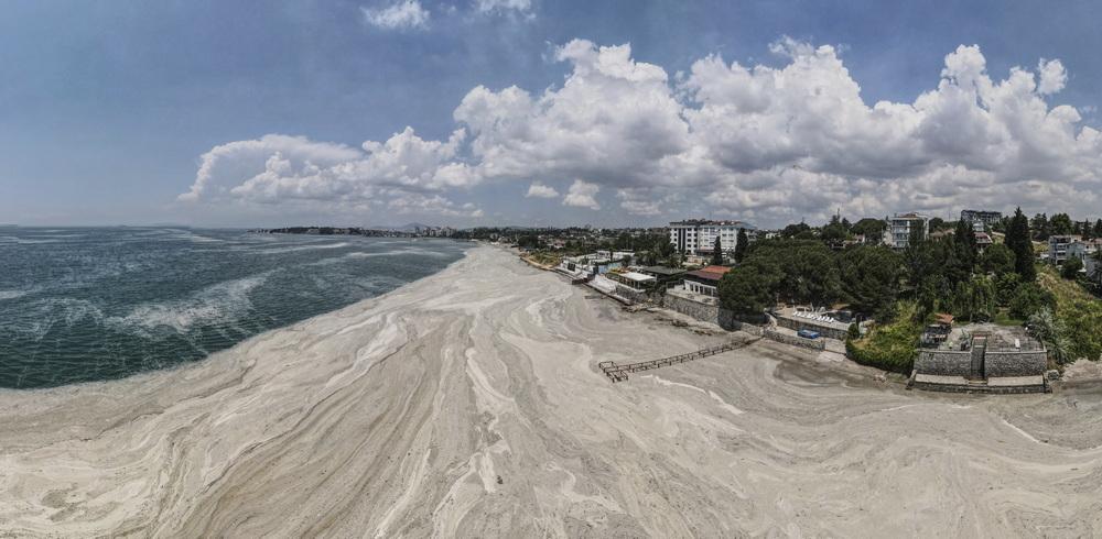 """当地时间2021年6月12日,土耳其科贾埃利,马尔马拉海岸逼近城市的""""海鼻涕""""。"""