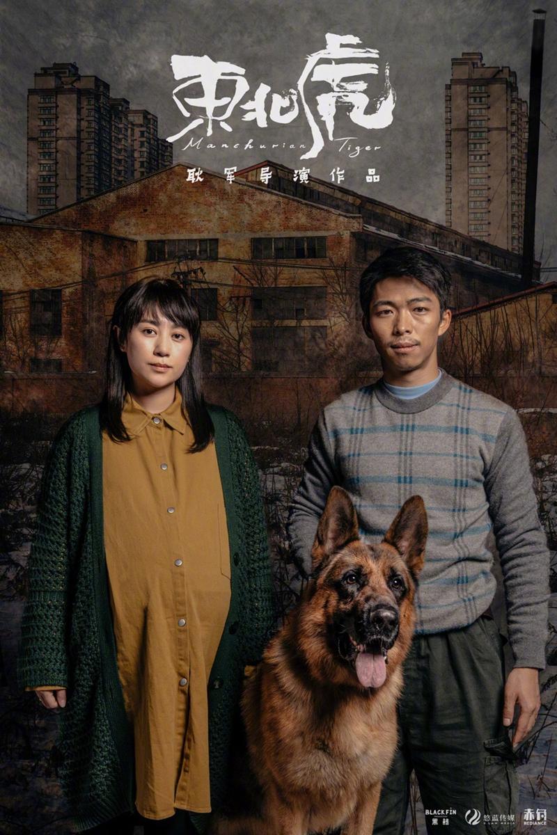 《东北虎》海报
