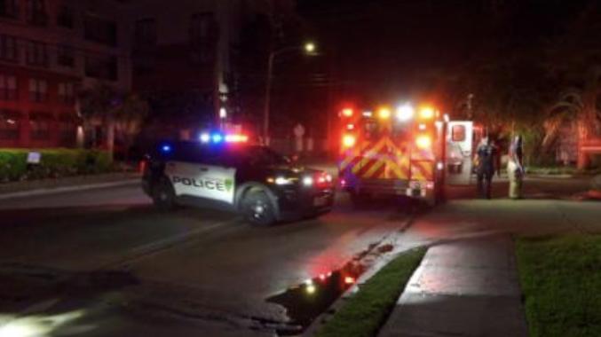 美国休斯敦副警察局长及其家人遭枪手袭击