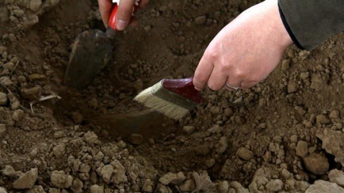 科学家在柴达木盆地发现5.5亿年前的远古化石群
