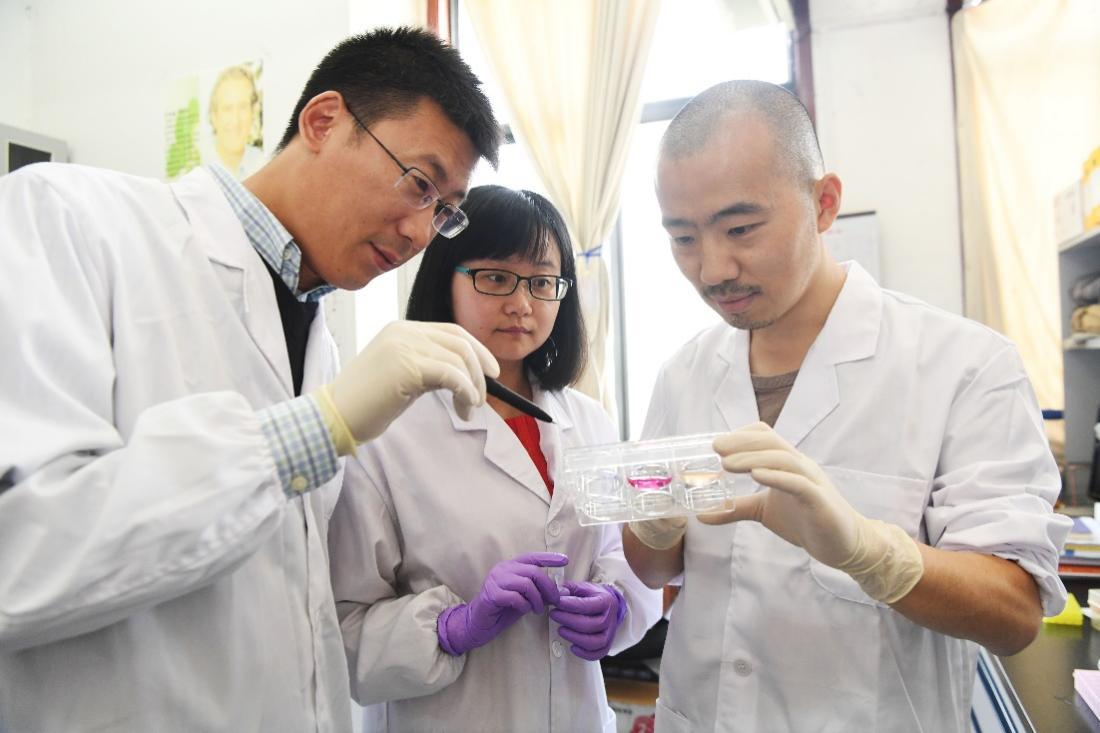 刘青松与团队成员讨论实验结果。