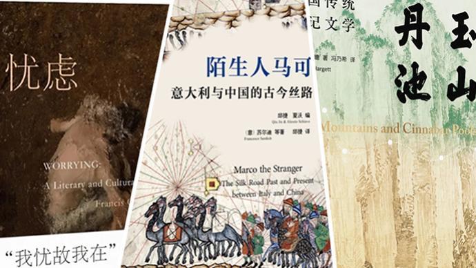 6月人文社科联合书单 忧虑:一段文学与文化史