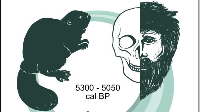 研究发现5000年前古人感染最早鼠疫,缺跳蚤传播关键基因