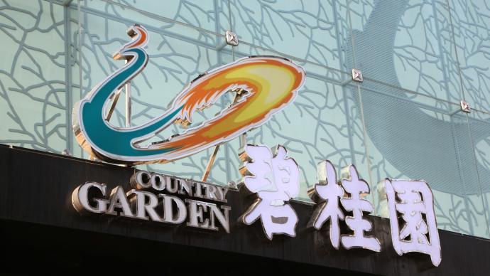 碧桂园上半年销售3030亿元,今年可售货值约9600亿元