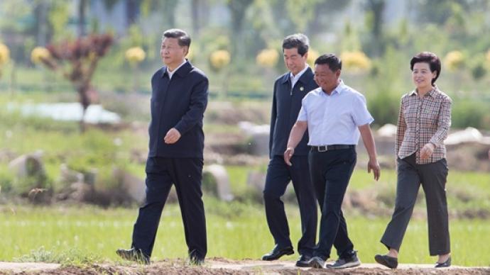 """""""中國人的飯碗任何時候都要牢牢端在自己手上""""——習近平重視糧食安全的故事"""