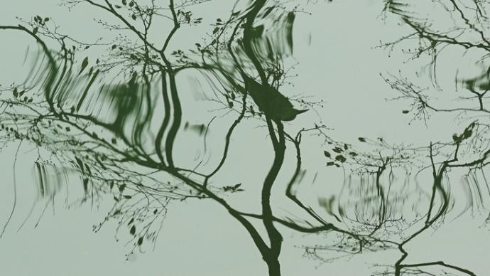 记忆之流|嘉定南翔一隅的河与湖
