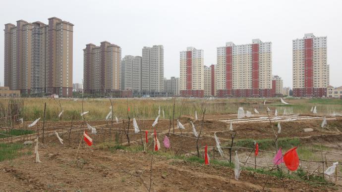 """22城首批""""兩集中""""供地,涉租賃地塊成交建面394萬平米"""