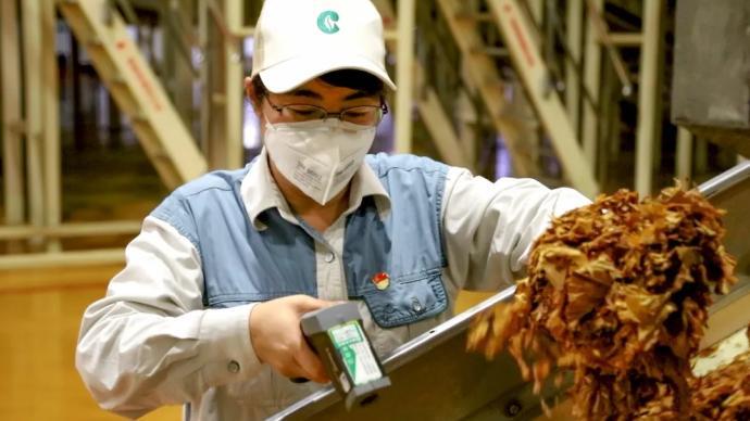 卷烟厂一线工人高工资是在浪费人力资源