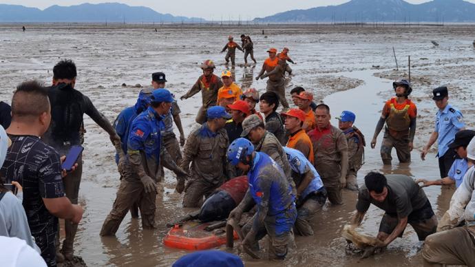 浙江台州搁浅鲸类仍为瓜头鲸,一头已死亡另一头拟近海放生
