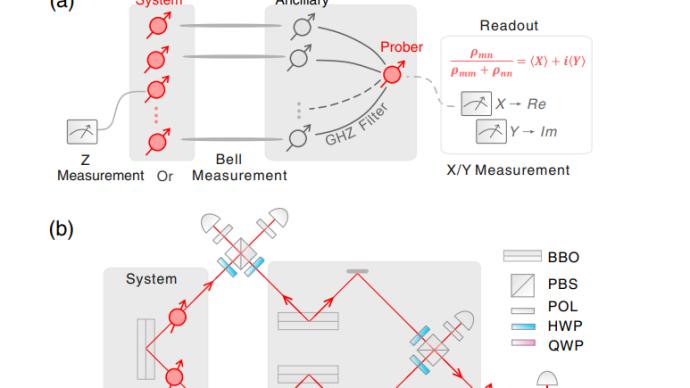 解读 潘建伟团队实现对稀疏多体量子态测量的指数加速