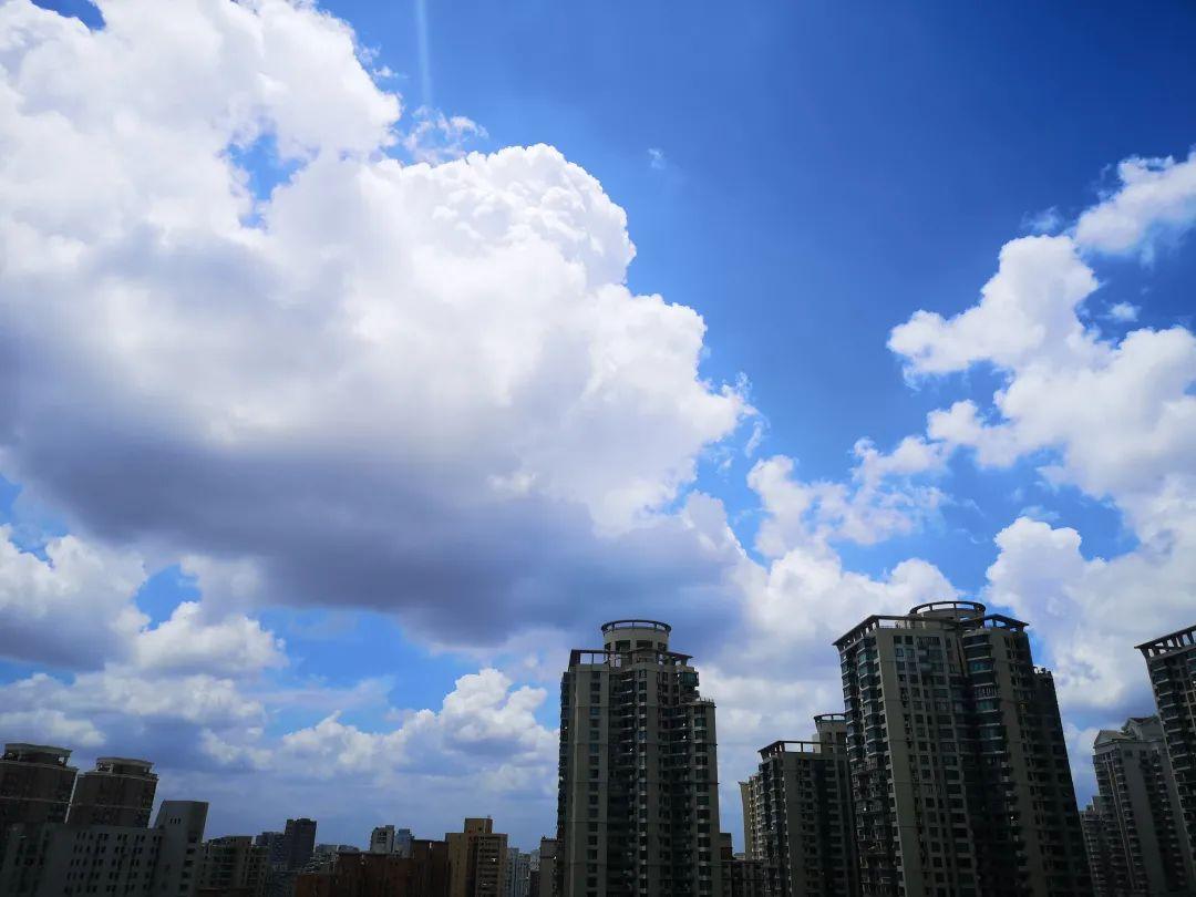 """本文图片均来自微信公号""""上海预警发布"""""""