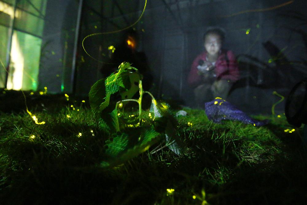 武汉室内萤火虫主题公园 视觉中国 资料图