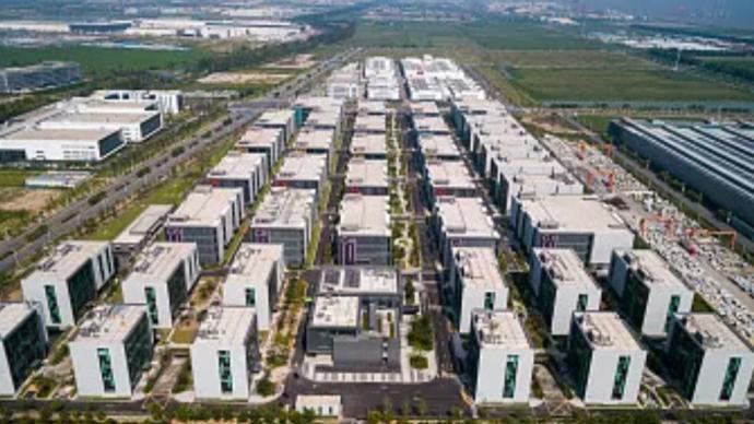 翁祖亮:在自贸试验区和临港新片区实行更大程度的压力测试