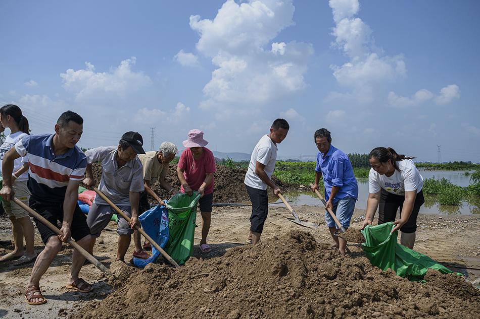 2021年7月24日,河南新乡市牧野大桥下,附近的汲城村居民自发在卫河边填灌沙袋用于防洪。卫河水位近日持续升高,该村村民已连续三天自发填灌沙袋用于加固河堤。
