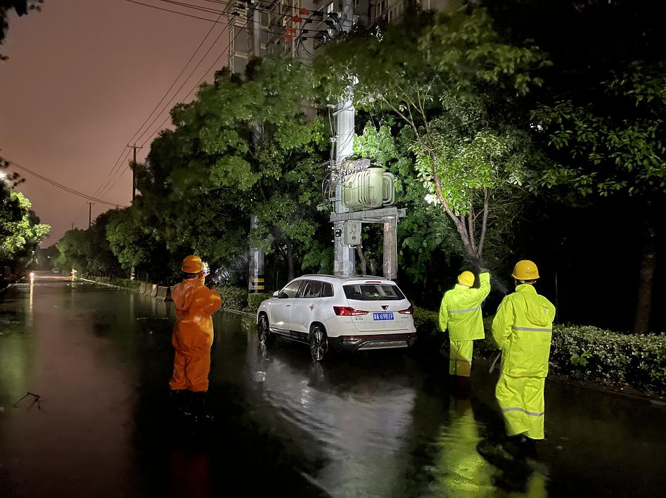 国网上海市北供电公司输电运检班组对跳闸线路进行特巡。本文图片 国网上海市电力公司 供图