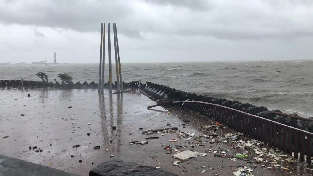 """台风""""烟花""""带来的破坏。本文图片均来自""""上海滨江森林公园""""微信公众号"""