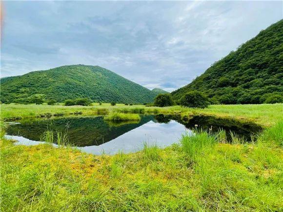 重庆五里坡国家级自然保护区