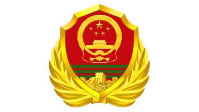 武警部队徽将于8月1日启用,国防部讲解式样和寓意