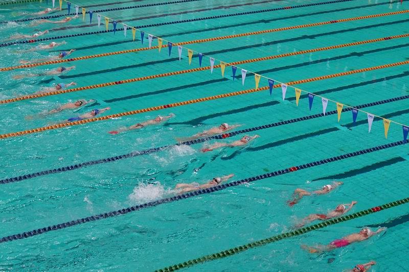 全国青少年U系列游泳比赛赛况。