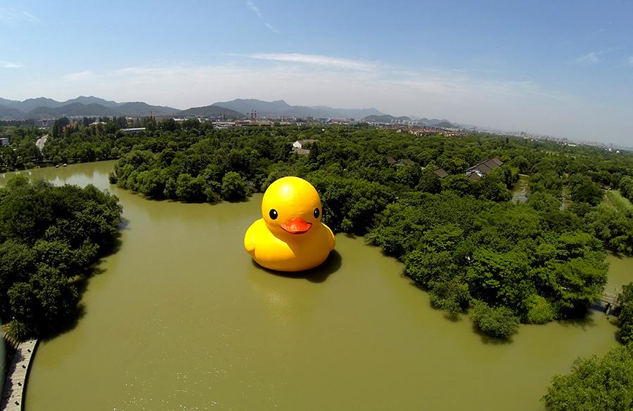大黄鸭来到杭州西溪湿地
