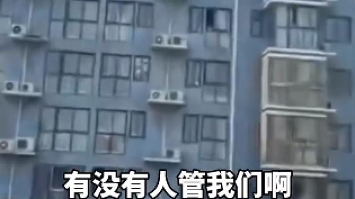 """郑州封控区居民物资供应不足""""喊楼""""求助,回应:已在处理"""