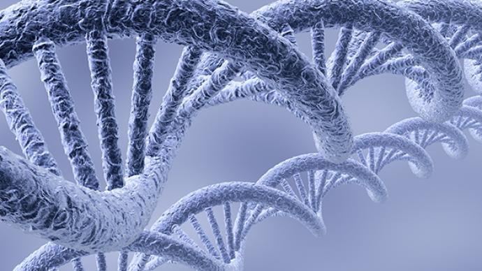 填补人类历史空白:137个人类基因组测序揭示中东人群历史