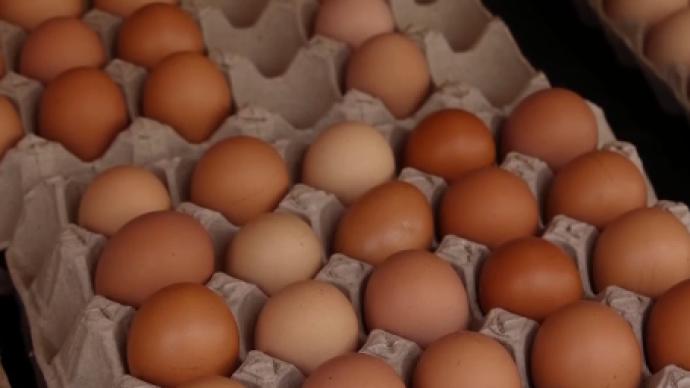 1斤漲1元、幾乎天天漲,近期雞蛋批發價大漲,還會繼續漲嗎