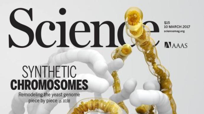 探索DNA數據存儲商業化,這家深圳先進院孵化的公司獲融資