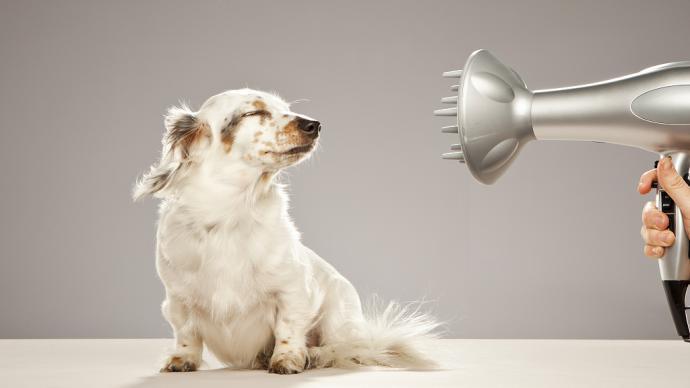 那么多造型的吹风机风嘴,它们到底是派啥用???