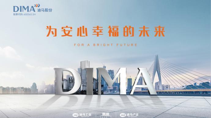 迪馬股份半年報:營收穩中有升,財務穩健多元拓展