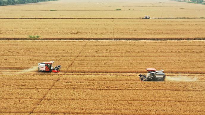農村土地承包權退出改革為何遲遲難以破題?  ?