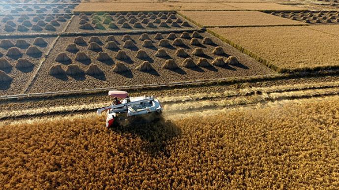 农田宜机化改造可再造4亿亩良田