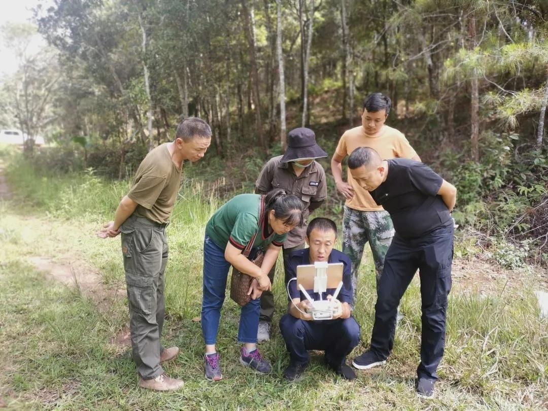 专家组通过实地走访和无人机监测,对景洪市亚洲象食物源基地建设项目进行考察初验。右一为查伟
