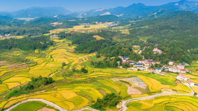 """""""十四五""""全國農業綠色發展規劃:2025年耕地質量等級達4.58"""