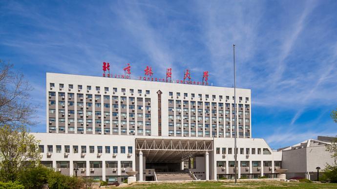 北京林業大學黨政辦主任程武升任黨委常委、副校長