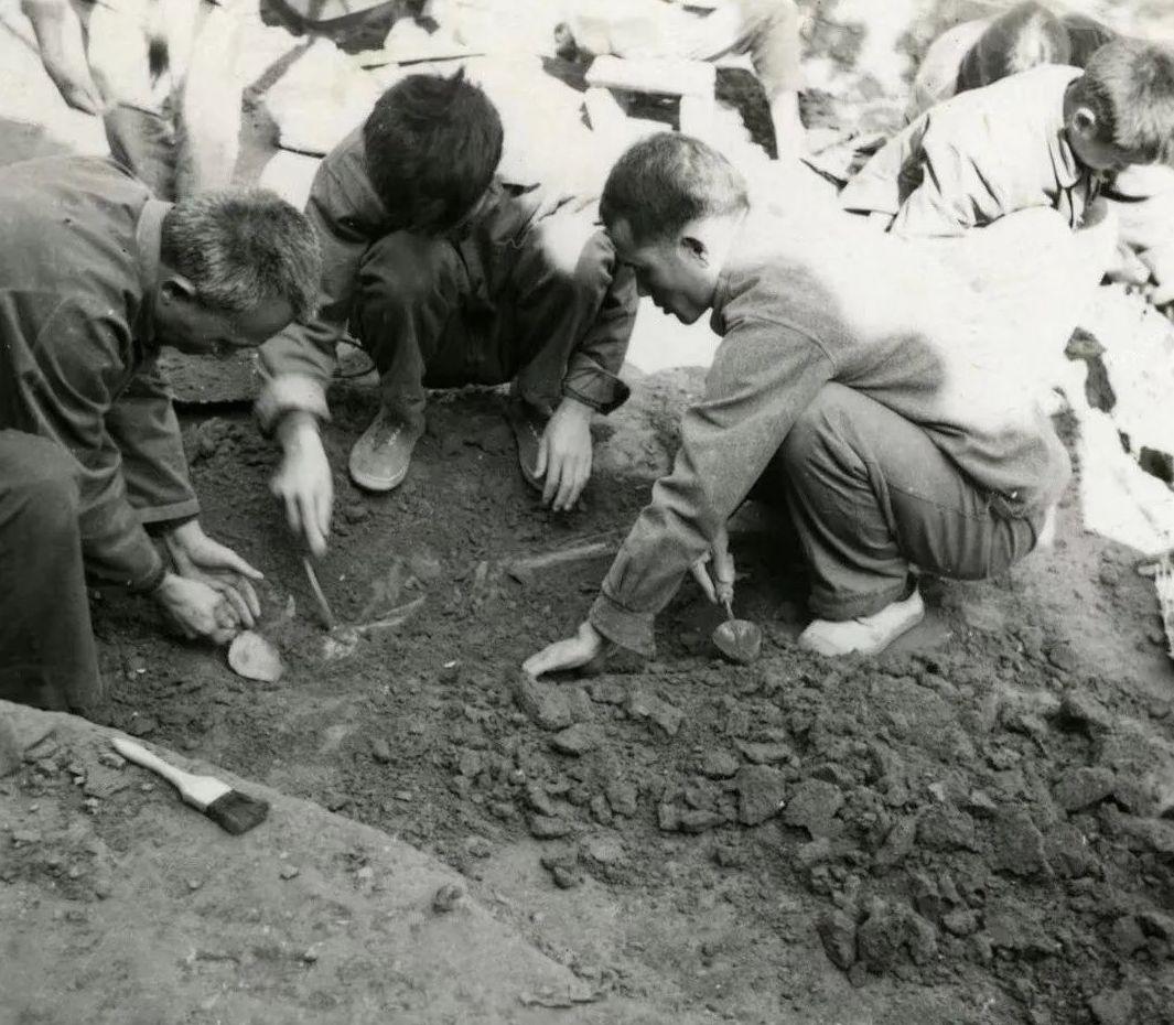 1975年巫山大溪遺址發掘