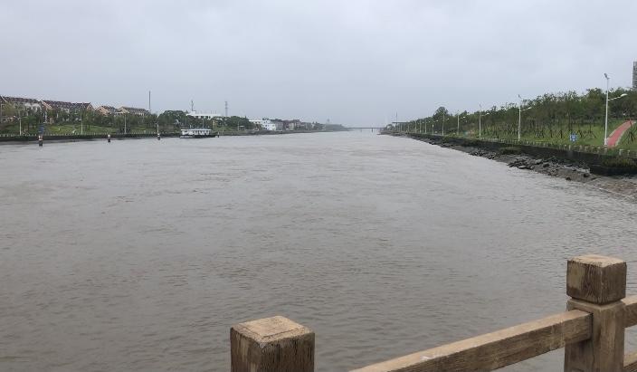 水闸上游的金汇港河