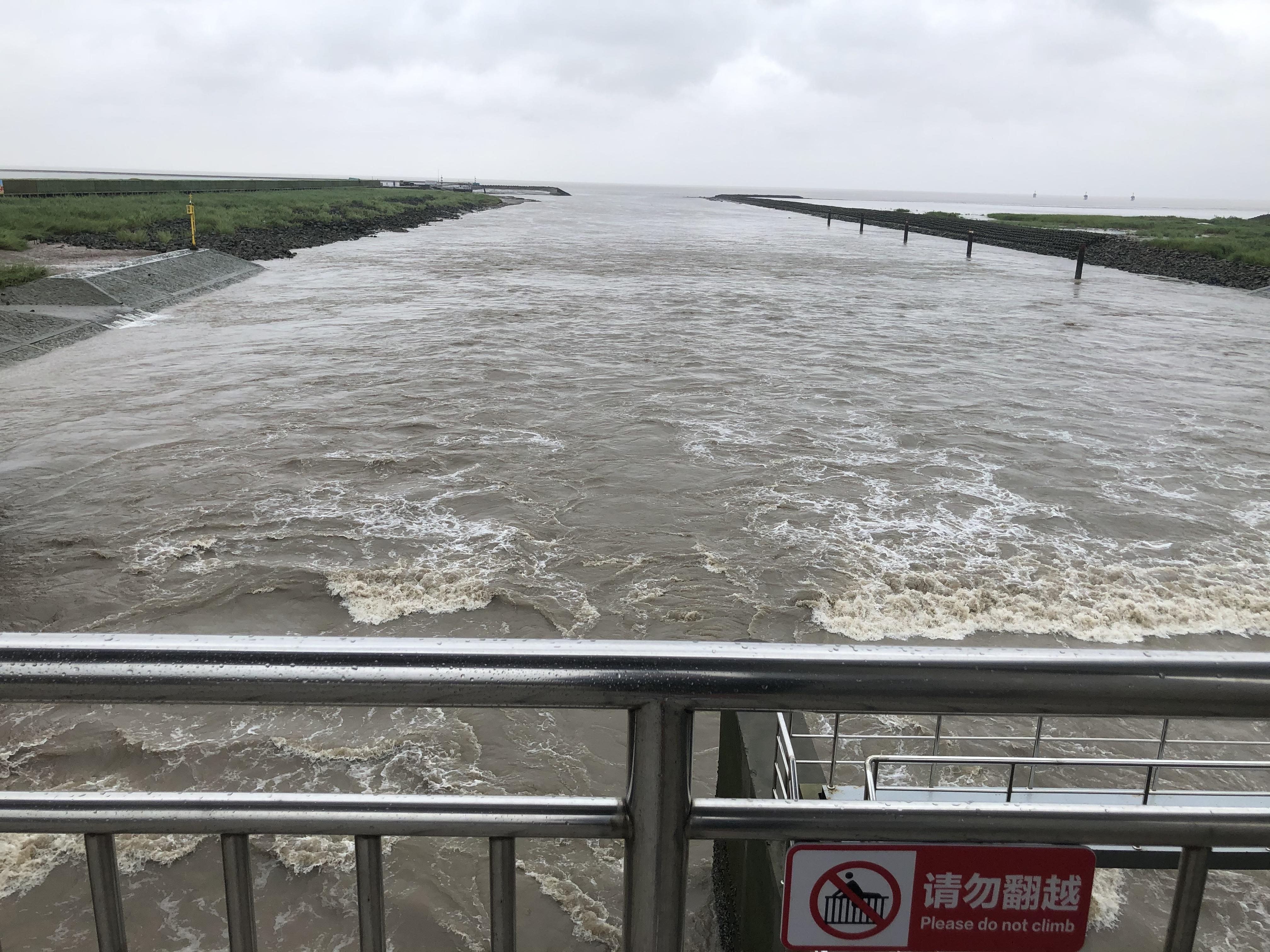 内河水经过金汇港南闸排入杭州湾