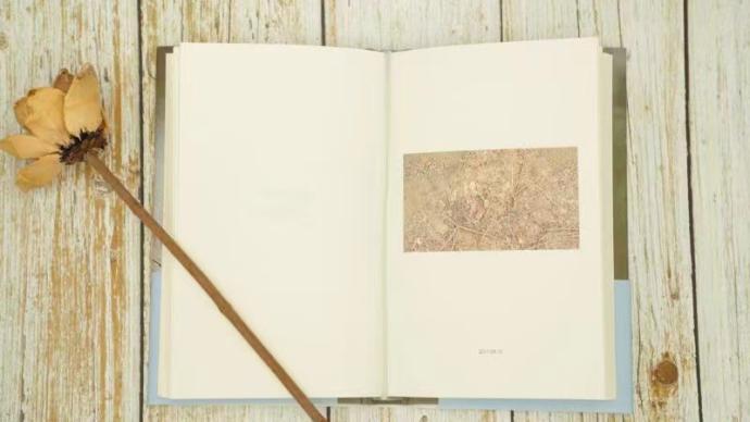 何向陽詩集《剎那》:強有力地感受詩意的強勁之美
