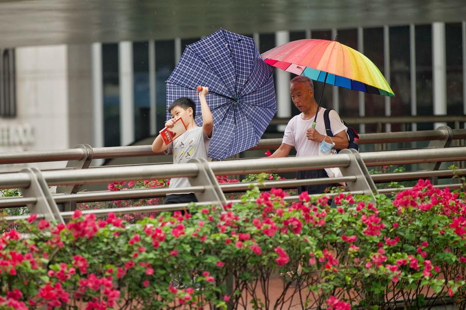 2021年9月10日,上海延安中路,男孩手中的伞被风吹翻。