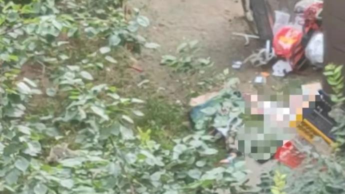 男子將孩子從29樓扔下并捅傷妻子,物業:孩子身亡妻子在搶救