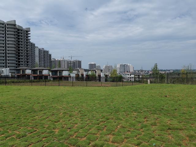在被拆除区域,记者看到虽然已经进行了复绿工程,但由于时间短暂,再加上雨水冲刷,方格式的小草皮还未完全长拢。 新华社记者 康锦谦 摄
